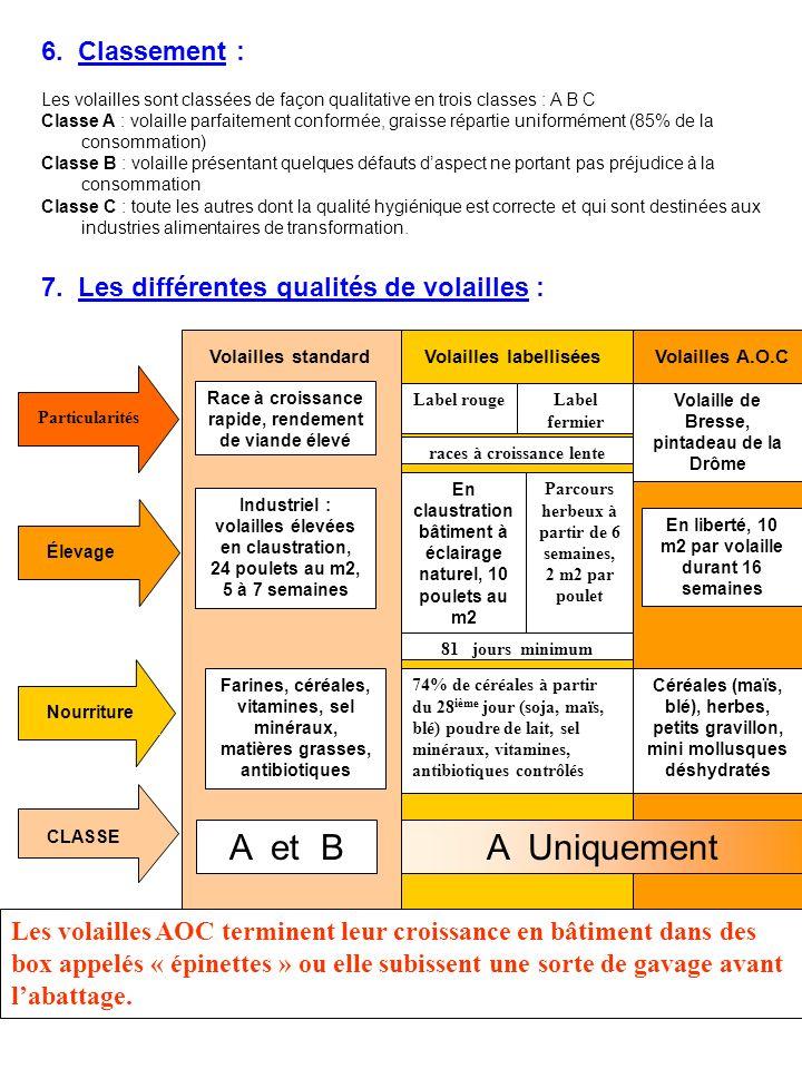 6. Classement : Les volailles sont classées de façon qualitative en trois classes : A B C Classe A : volaille parfaitement conformée, graisse répartie