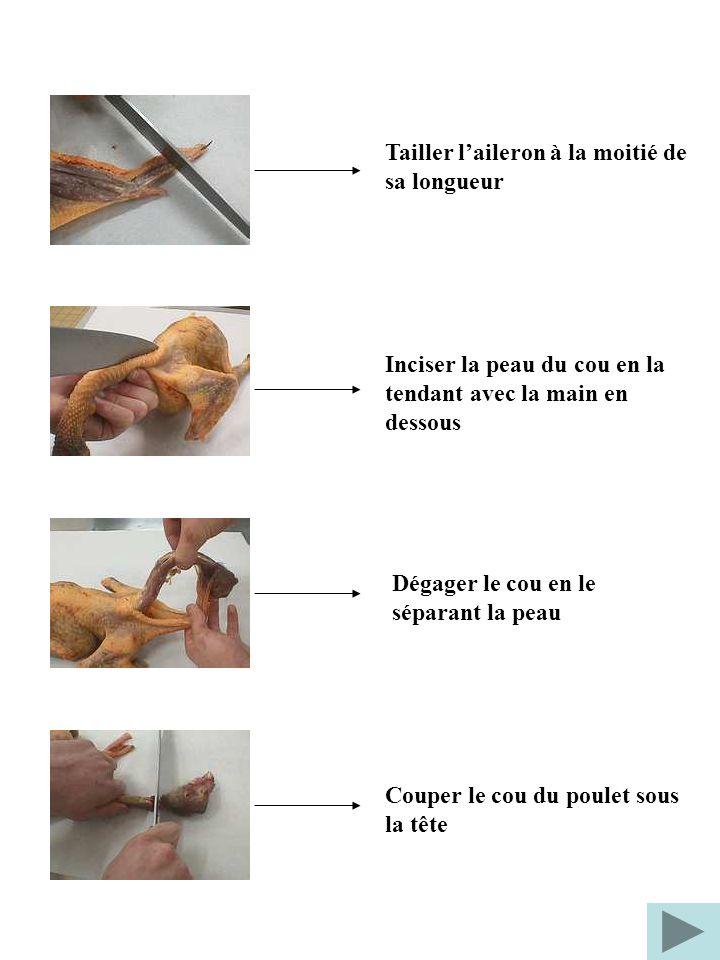 Tailler laileron à la moitié de sa longueur Inciser la peau du cou en la tendant avec la main en dessous Dégager le cou en le séparant la peau Couper