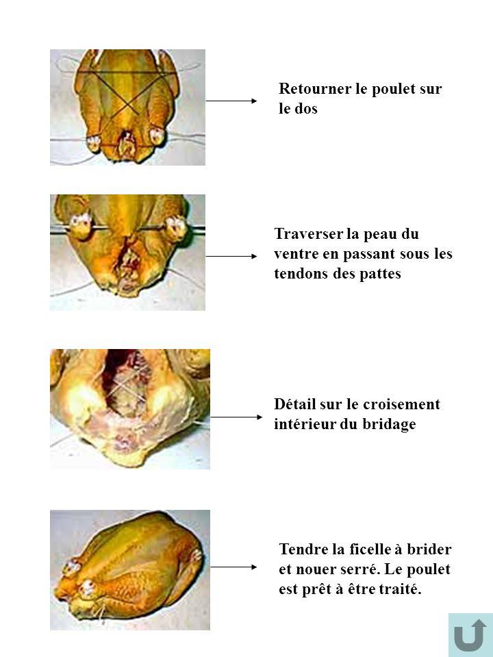 Retourner le poulet sur le dos Traverser la peau du ventre en passant sous les tendons des pattes Détail sur le croisement intérieur du bridage Tendre