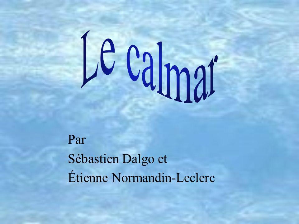 Par Sébastien Dalgo et Étienne Normandin-Leclerc École Joseph-François-Perrault, Montréal, mai 2002 Validation du contenu et révision linguistique: Le