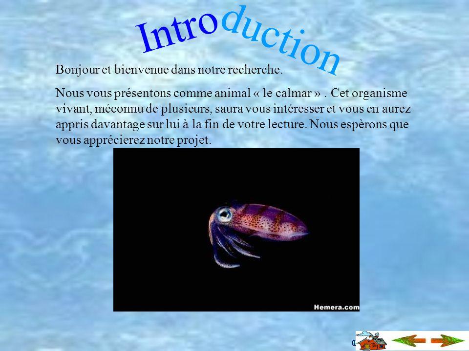 Table des matières Introduction Description et anatomie Reproduction Incroyable Calmar abyssal Calmar Loligo Le calmar géant Nutrition Informations va