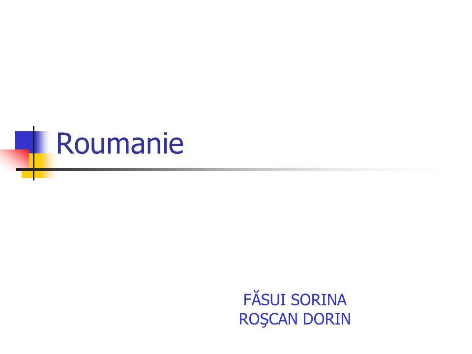 Roumanie FĂSUI SORINA ROŞCAN DORIN