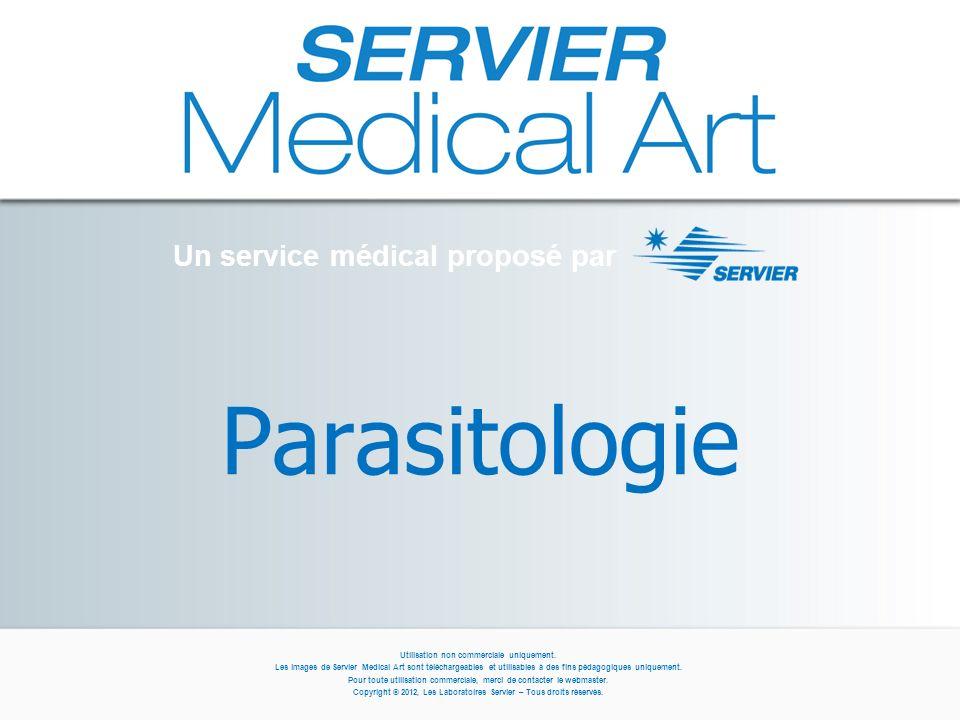 Parasitologie Un service médical proposé par Utilisation non commerciale uniquement.