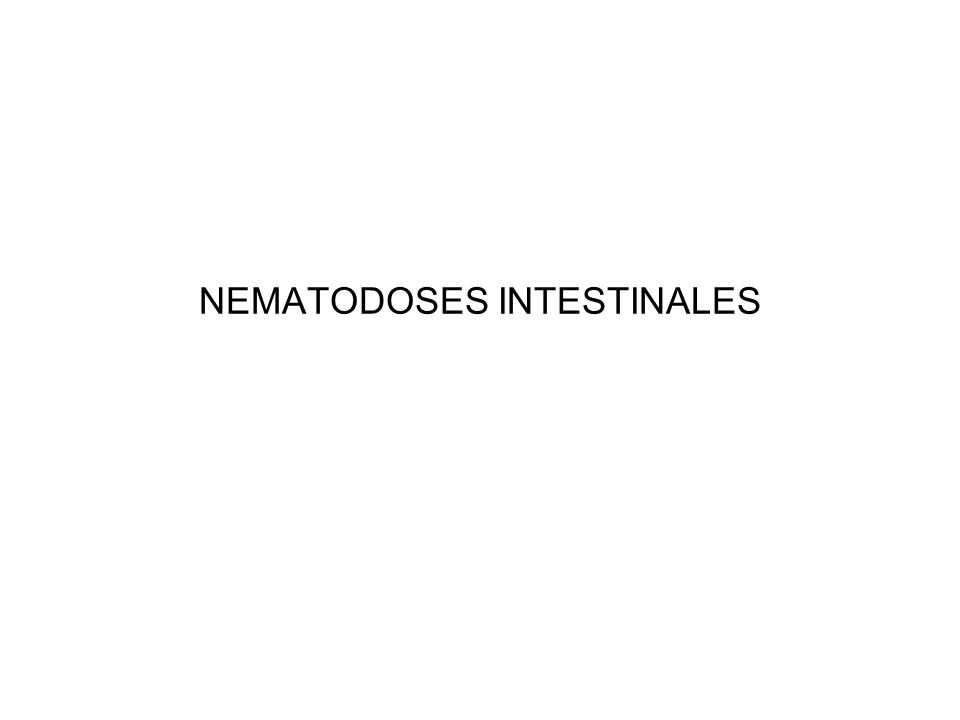 NEMATODOSES INTESTINALES