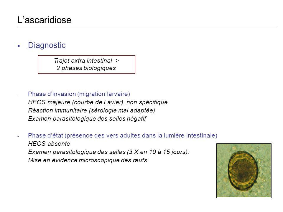 Diagnostic - Phase dinvasion (migration larvaire) HEOS majeure (courbe de Lavier), non spécifique Réaction immunitaire (sérologie mal adaptée) Examen