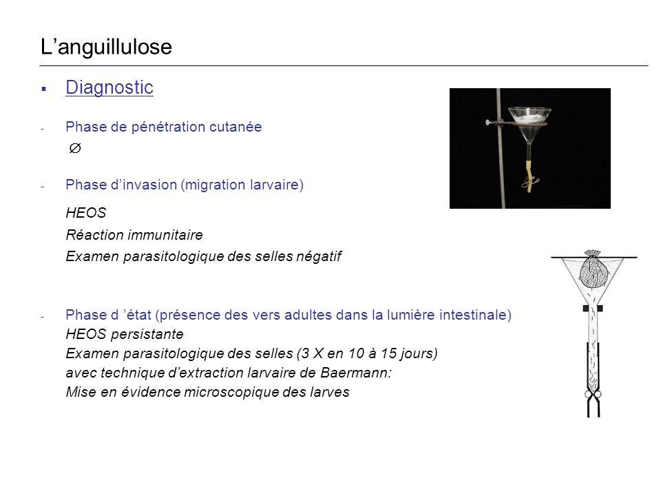 Diagnostic - Phase de pénétration cutanée - Phase dinvasion (migration larvaire) HEOS Réaction immunitaire Examen parasitologique des selles négatif -