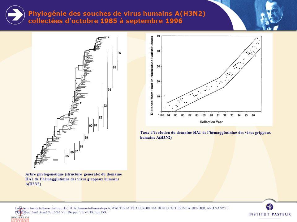 Composition du vaccin antigrippal de 1970 à 1999 Source: OMS