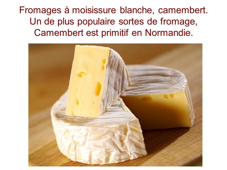 Fromages à moisissure blanche, camembert. Un de plus populaire sortes de fromage, Camembert est primitif en Normandie.