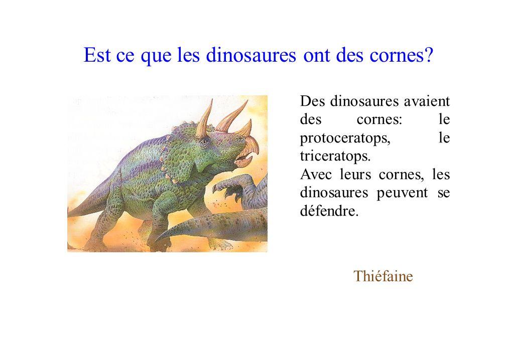 Des dinosaures avaient des cornes: le protoceratops, le triceratops. Avec leurs cornes, les dinosaures peuvent se défendre. Thiéfaine Est ce que les d