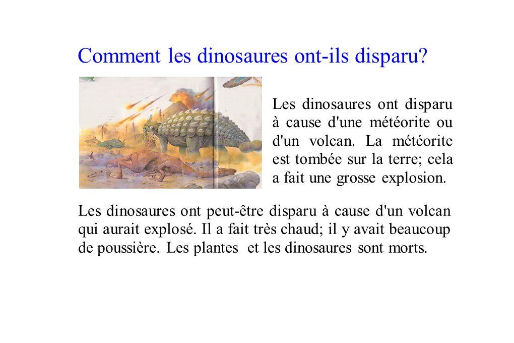 Comment les dinosaures ont-ils disparu? Les dinosaures ont disparu à cause d'une météorite ou d'un volcan. La météorite est tombée sur la terre; cela