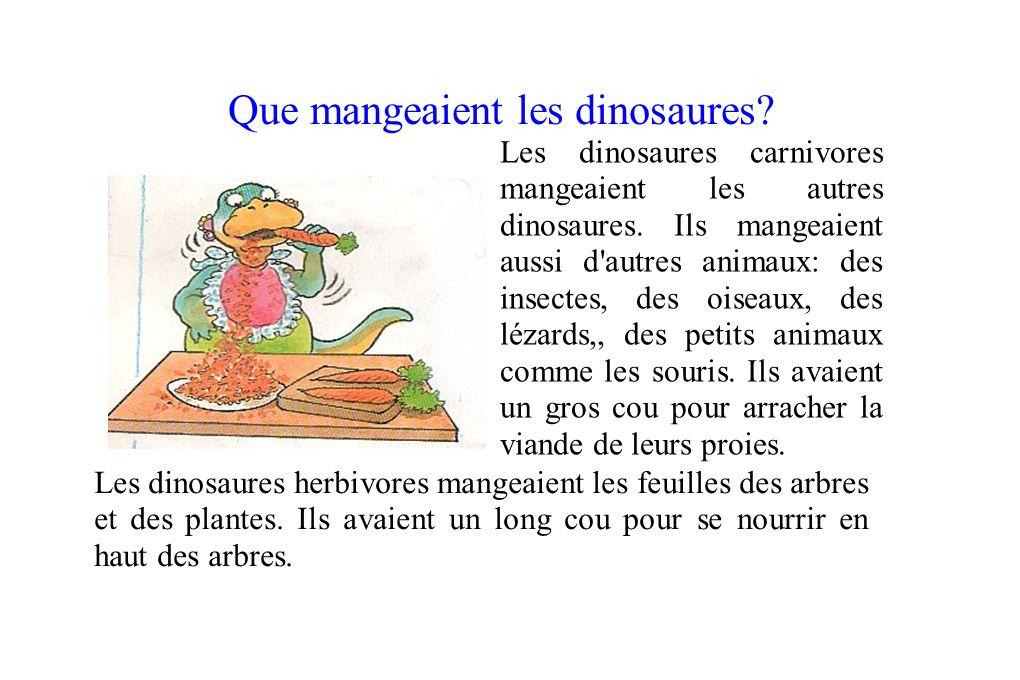 Que mangeaient les dinosaures? Les dinosaures carnivores mangeaient les autres dinosaures. Ils mangeaient aussi d'autres animaux: des insectes, des oi