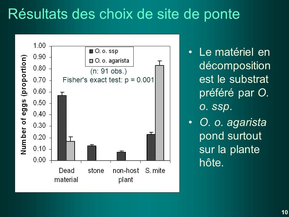 Le matériel en décomposition est le substrat préféré par O. o. ssp. O. o. agarista pond surtout sur la plante hôte. Résultats des choix de site de pon