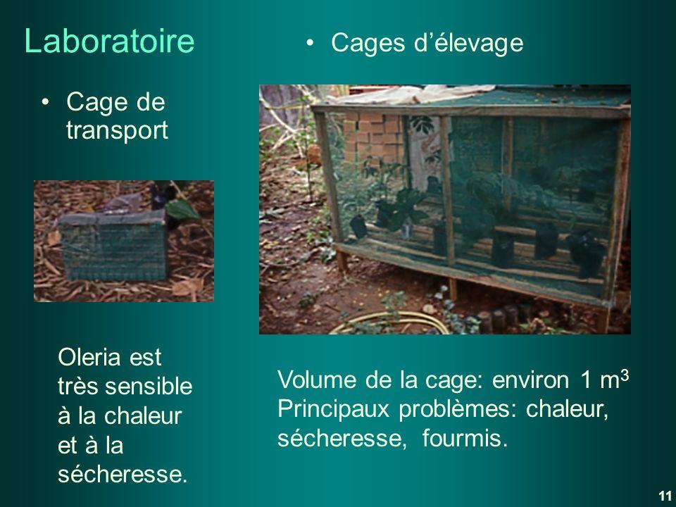 Laboratoire Cage de transport Cages délevage Oleria est très sensible à la chaleur et à la sécheresse. Volume de la cage: environ 1 m 3 Principaux pro