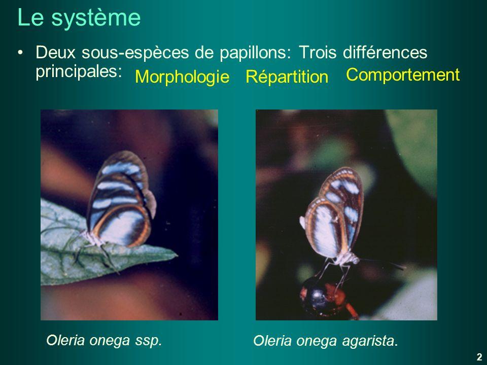 Le système Deux sous-espèces de papillons: Trois différences principales: Oleria onega ssp.Oleria onega agarista. Morphologie Répartition Comportement