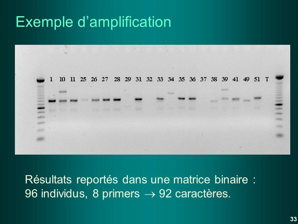 Exemple damplification Résultats reportés dans une matrice binaire : 96 individus, 8 primers 92 caractères. 33