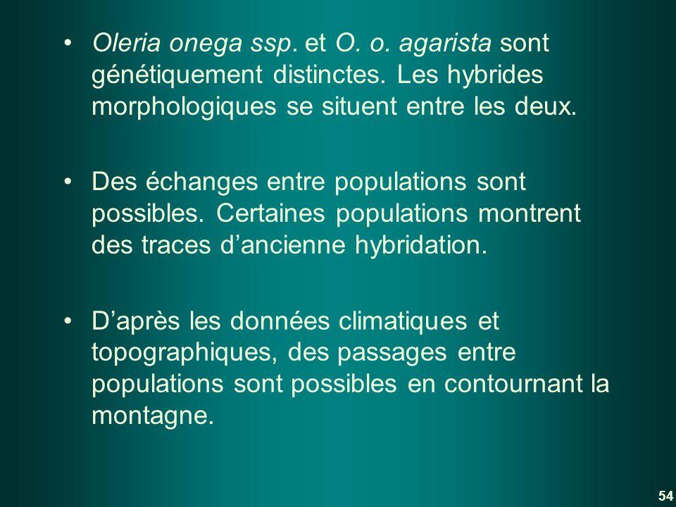 Oleria onega ssp. et O. o. agarista sont génétiquement distinctes. Les hybrides morphologiques se situent entre les deux. Des échanges entre populatio