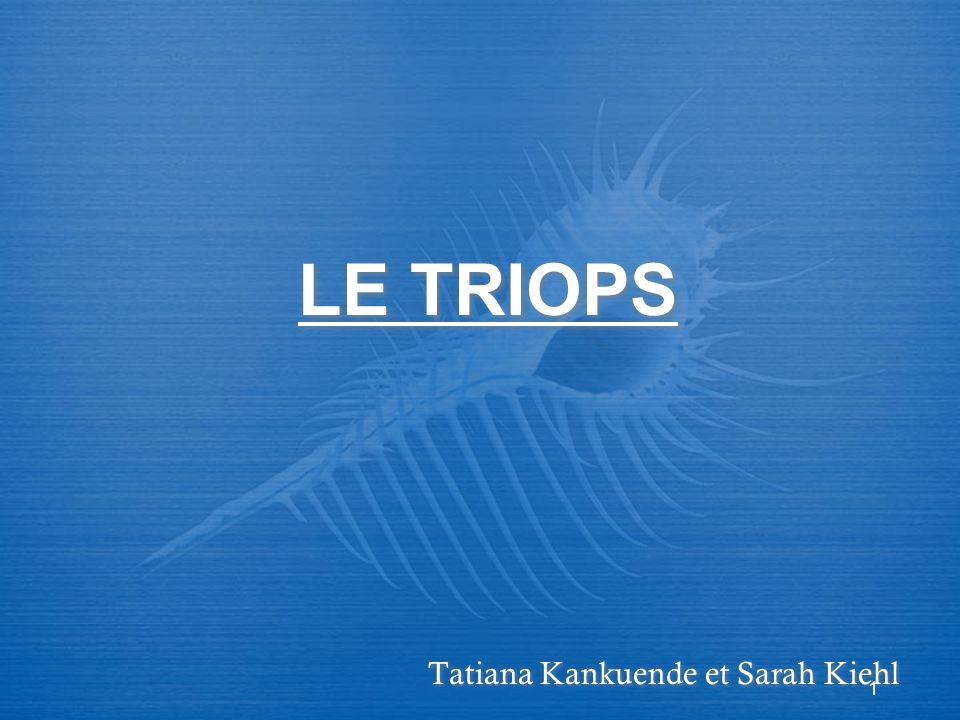 1 LE TRIOPS Tatiana Kankuende et Sarah Kiehl