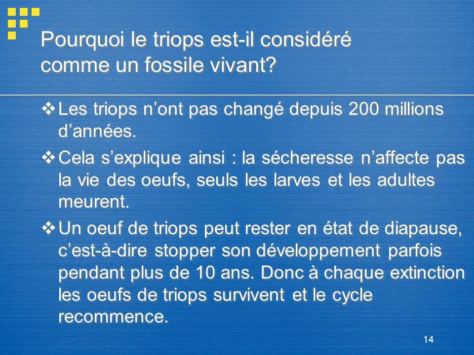 14 Pourquoi le triops est-il considéré comme un fossile vivant? Les triops nont pas changé depuis 200 millions dannées. Cela sexplique ainsi : la séch