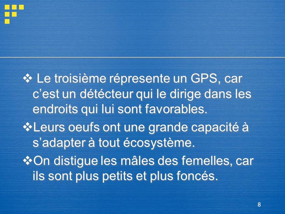 8 Le troisième répresente un GPS, car cest un détécteur qui le dirige dans les endroits qui lui sont favorables. Leurs oeufs ont une grande capacité à