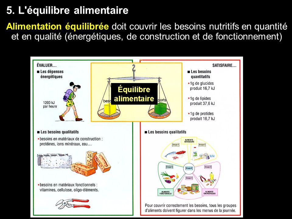 Équilibre alimentaire 5. L'équilibre alimentaire Alimentation équilibrée doit couvrir les besoins nutritifs en quantité et en qualité (énergétiques, d