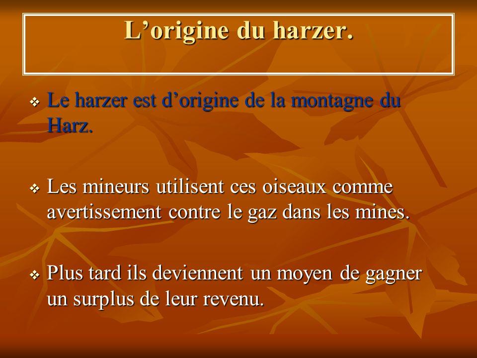 Lorigine du harzer. Le harzer est dorigine de la montagne du Harz. Le harzer est dorigine de la montagne du Harz. Les mineurs utilisent ces oiseaux co