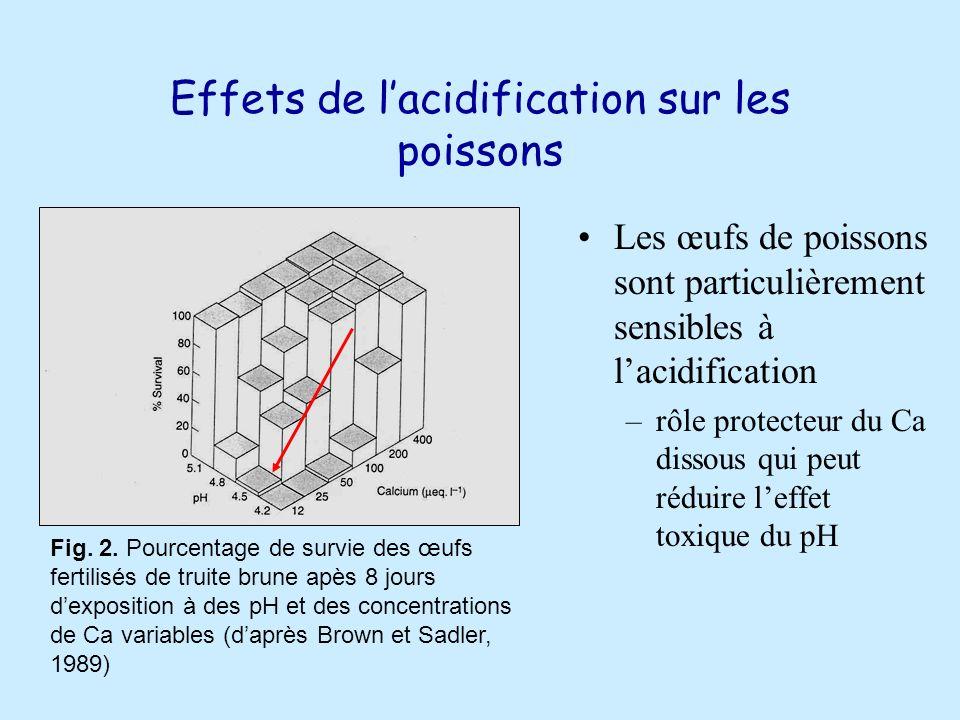 Effets de lacidification sur les poissons Les œufs de poissons sont particulièrement sensibles à lacidification –rôle protecteur du Ca dissous qui peut réduire leffet toxique du pH Fig.