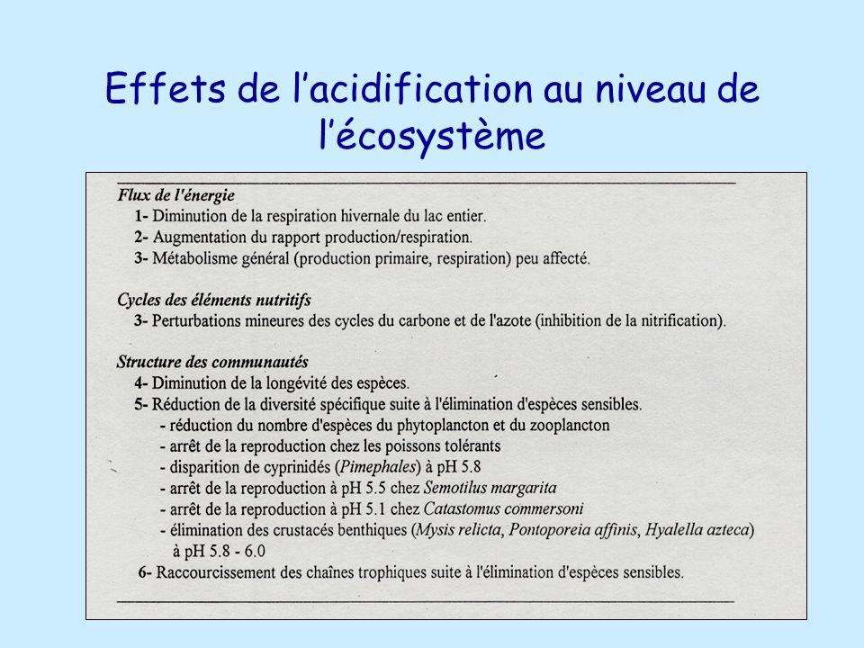 Effets de lacidification au niveau de lécosystème
