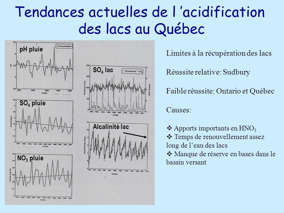 Tendances actuelles de l acidification des lacs au Québec pH pluie SO 4 pluie NO 3 pluie SO 4 lac Alcalinité lac Limites à la récupération des lacs Réussite relative: Sudbury Faible réussite: Ontario et Québec Causes: Apports importants en HNO 3 Temps de renouvellement assez long de leau des lacs Manque de réserve en bases dans le bassin versant