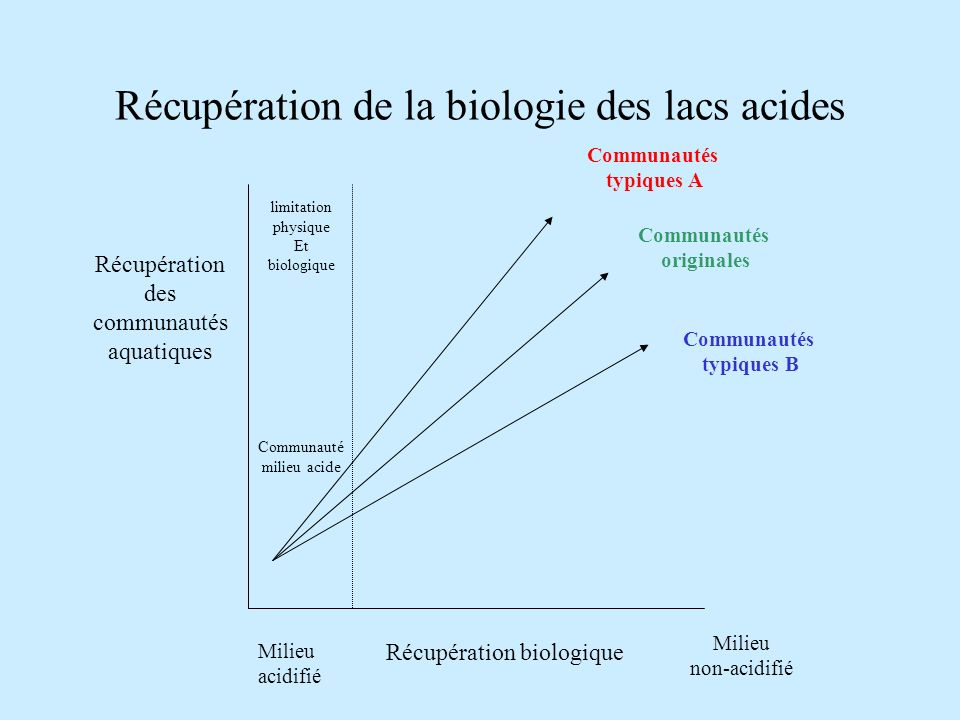 Récupération de la biologie des lacs acides Récupération des communautés aquatiques Communautés originales Communautés typiques B Communautés typiques A Récupération biologique Milieu acidifié Milieu non-acidifié Communauté milieu acide limitation physique Et biologique