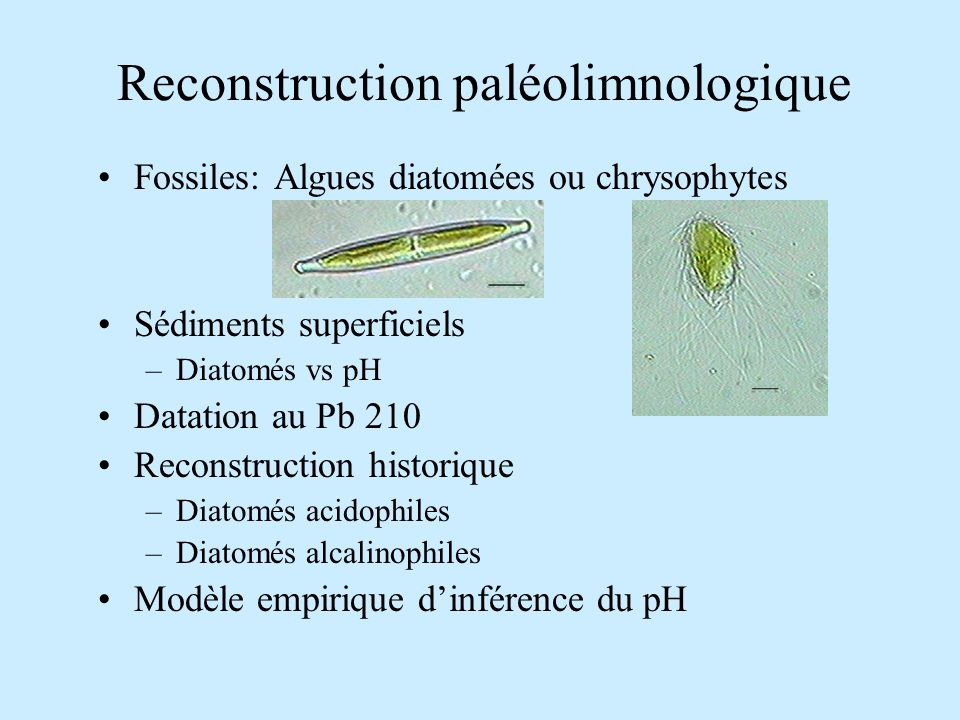 Reconstruction paléolimnologique Fossiles: Algues diatomées ou chrysophytes Sédiments superficiels –Diatomés vs pH Datation au Pb 210 Reconstruction h