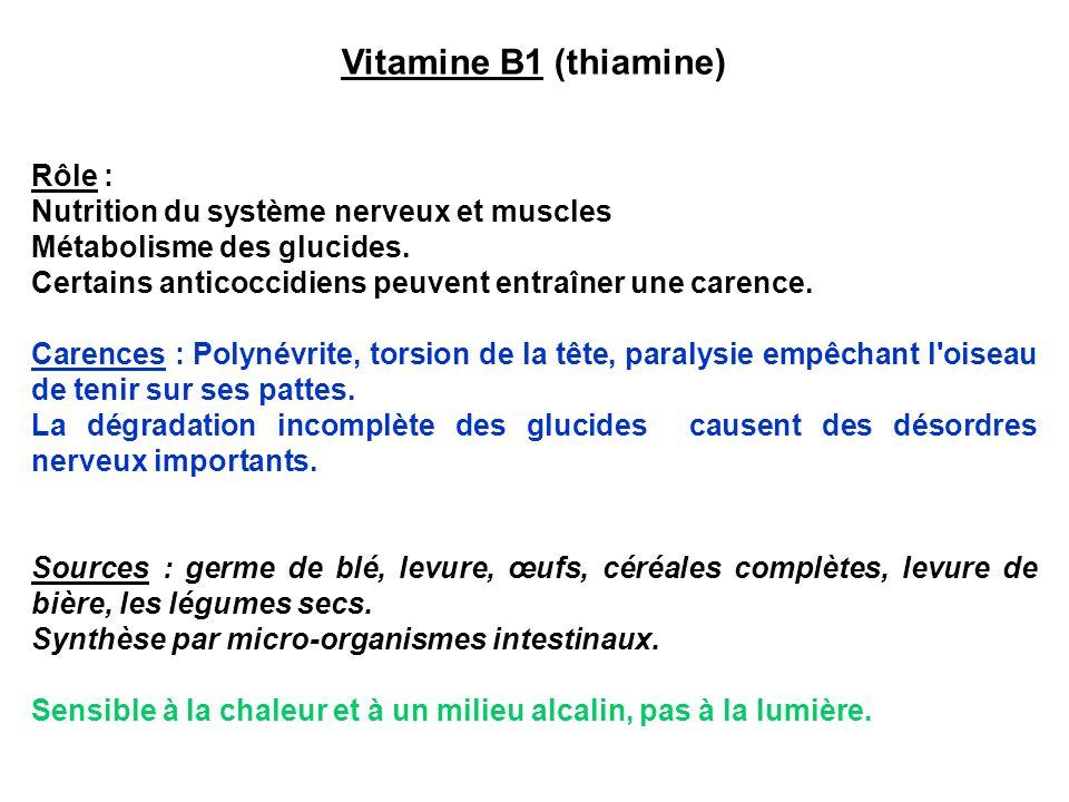Vitamine B2 (riboflavine) Rôle : Facteur de croissance.