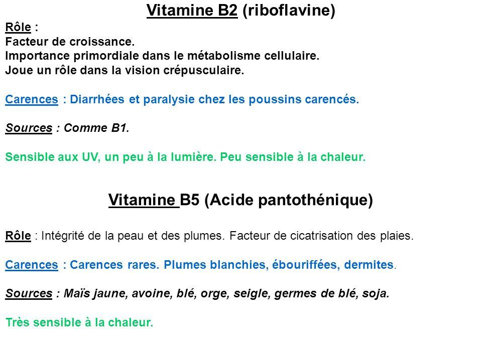 Vitamine B2 (riboflavine) Rôle : Facteur de croissance. Importance primordiale dans le métabolisme cellulaire. Joue un rôle dans la vision crépusculai