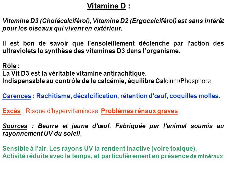 Vitamine D : Vitamine D3 (Cholécalciférol), Vitamine D2 (Ergocalciférol) est sans intérêt pour les oiseaux qui vivent en extérieur. Il est bon de savo