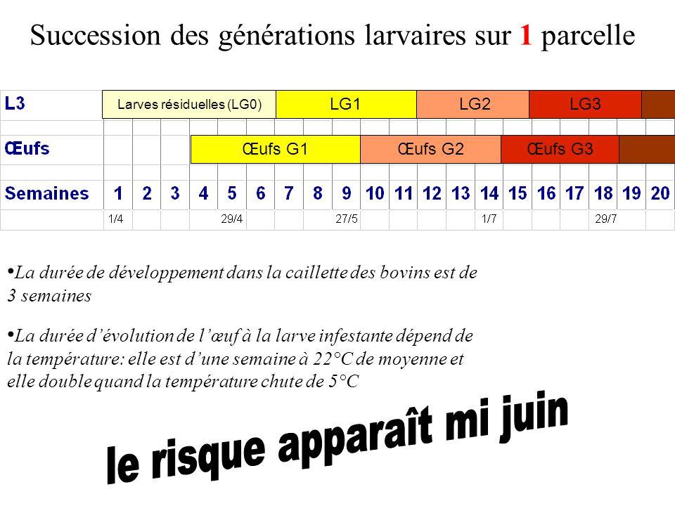 Succession des générations larvaires sur 1 parcelle Larves résiduelles (LG0) Œufs G1 LG1 La durée de développement dans la caillette des bovins est de