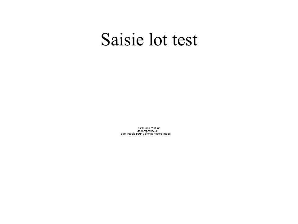 Saisie lot test