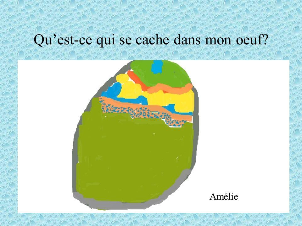 Quest-ce qui se cache dans mon oeuf? Amélie