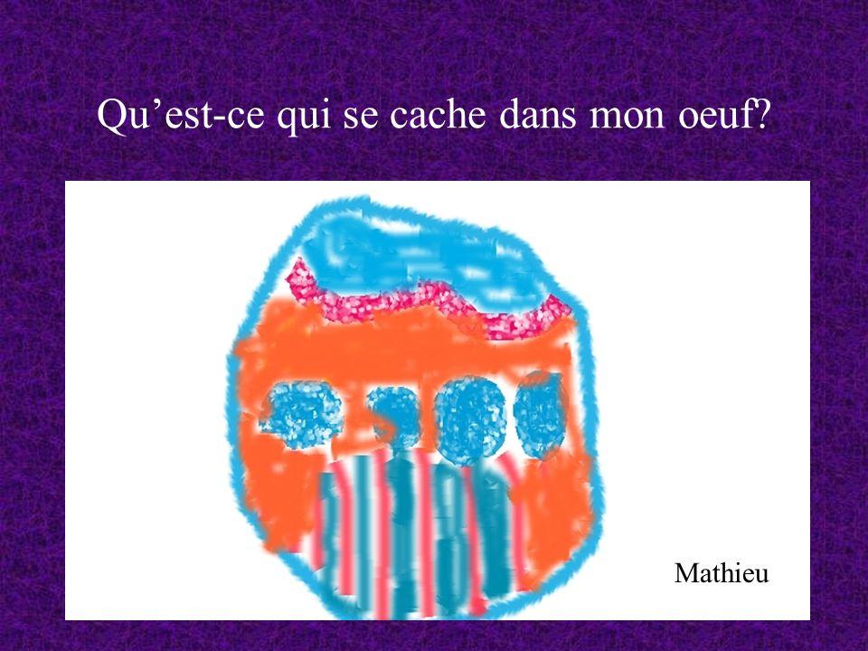 Quest-ce qui se cache dans mon oeuf? Mathieu