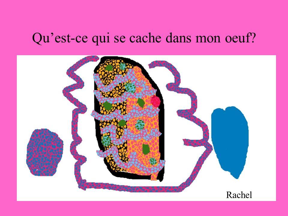 Quest-ce qui se cache dans mon oeuf? Rachel