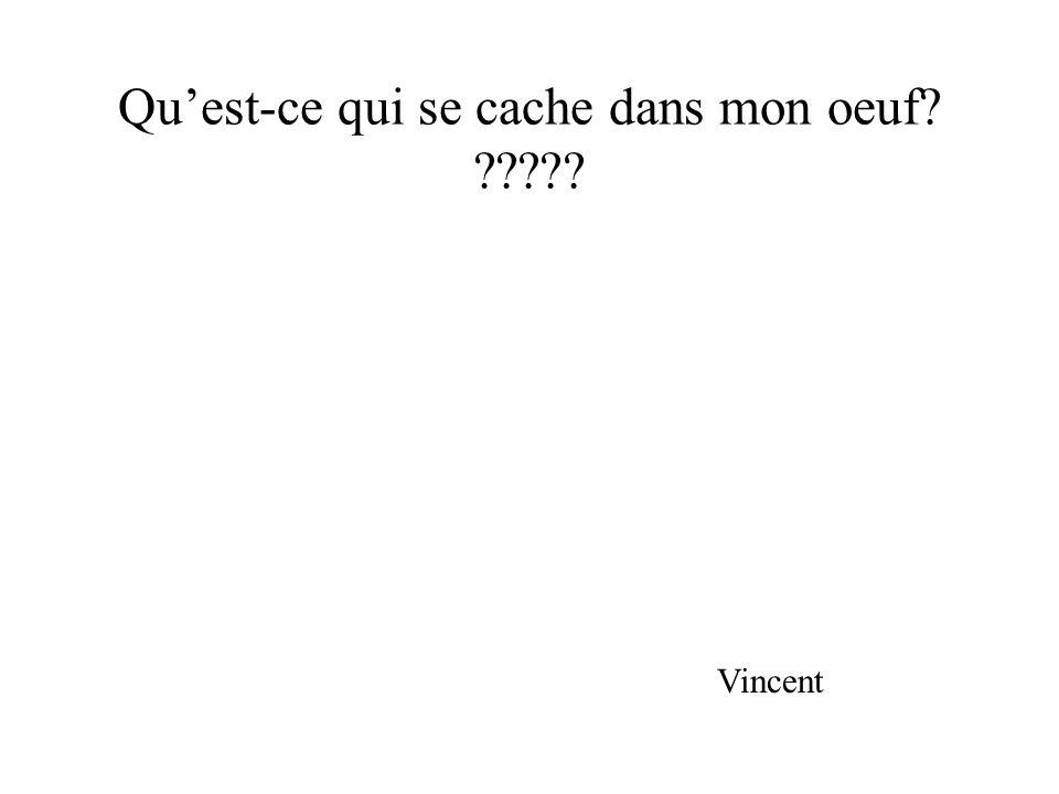 Quest-ce qui se cache dans mon oeuf? ????? Vincent