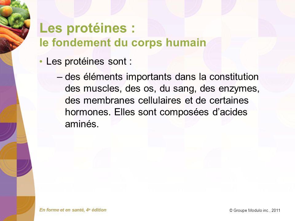 En forme et en santé, 4 e édition © Groupe Modulo inc., 2011 Les protéines : le fondement du corps humain Les protéines sont : –des éléments important