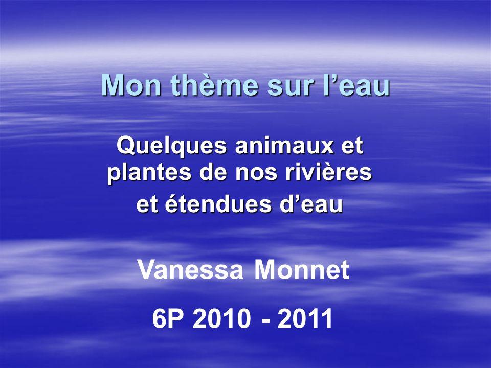 Mon thème sur leau Quelques animaux et plantes de nos rivières et étendues deau Vanessa Monnet 6P 2010 - 2011