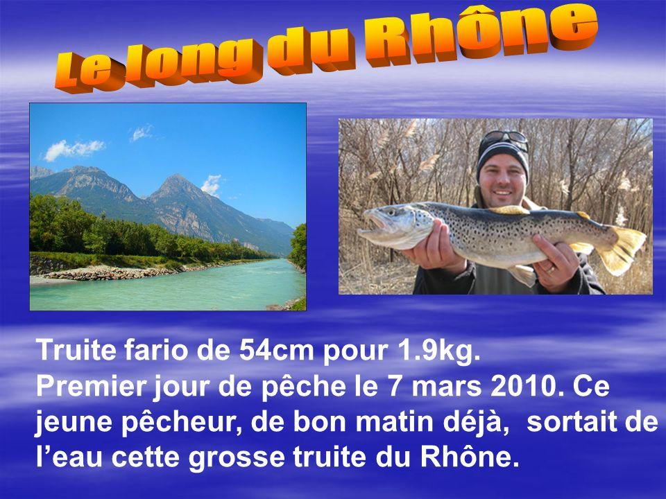 Truite fario de 54cm pour 1.9kg.Premier jour de pêche le 7 mars 2010.