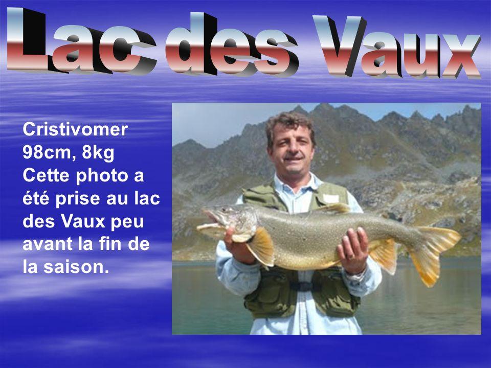 Cristivomer 98cm, 8kg Cette photo a été prise au lac des Vaux peu avant la fin de la saison.
