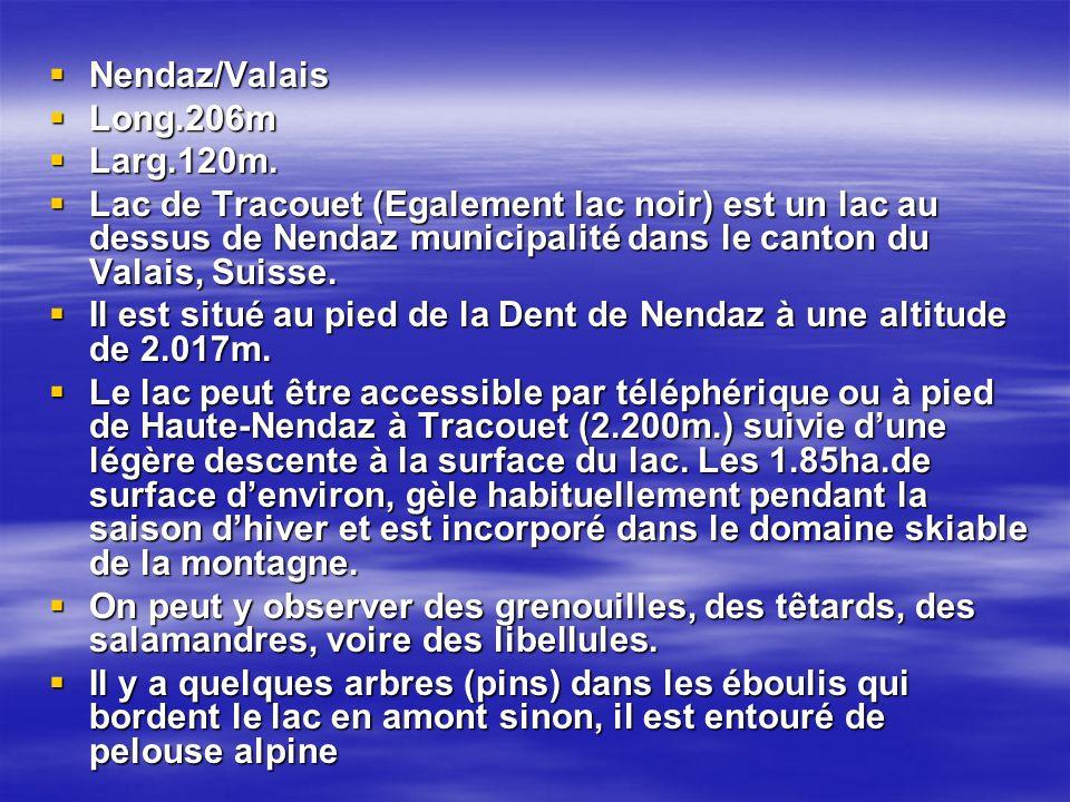 Nendaz/Valais Nendaz/Valais Long.206m Long.206m Larg.120m.