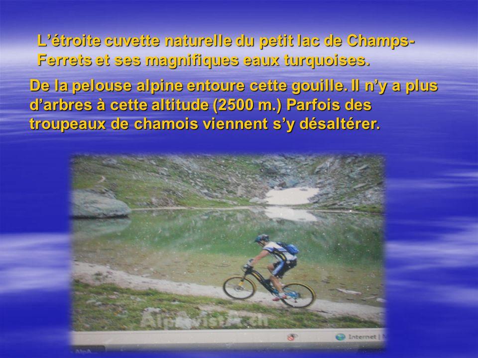 Létroite cuvette naturelle du petit lac de Champs- Ferrets et ses magnifiques eaux turquoises.