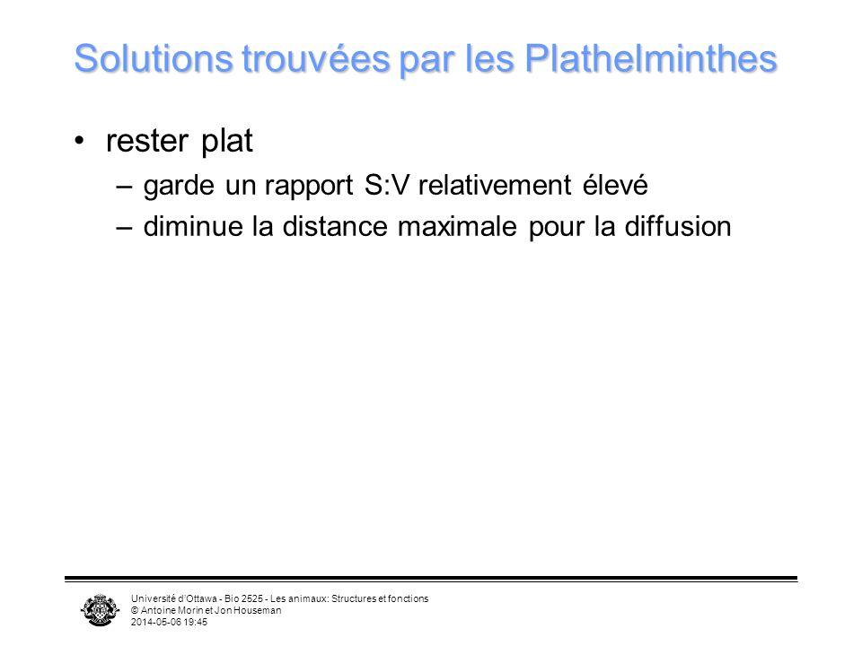 Université dOttawa - Bio 2525 - Les animaux: Structures et fonctions © Antoine Morin et Jon Houseman 2014-05-06 19:47 Solutions trouvées par les Plath