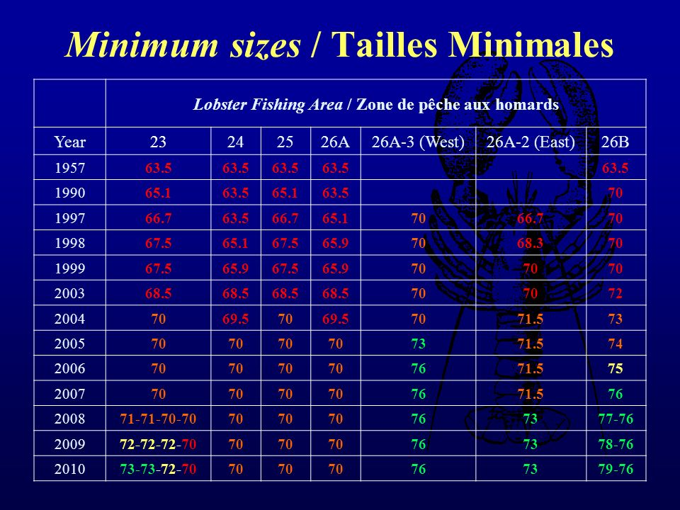 Minimum sizes / Tailles Minimales Lobster Fishing Area / Zone de pêche aux homards Year23242526A26A-3 (West)26A-2 (East)26B 195763.5 199065.163.565.16