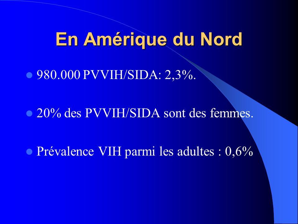 En Amérique du Nord 980.000 PVVIH/SIDA: 2,3%. 20% des PVVIH/SIDA sont des femmes. Prévalence VIH parmi les adultes : 0,6%