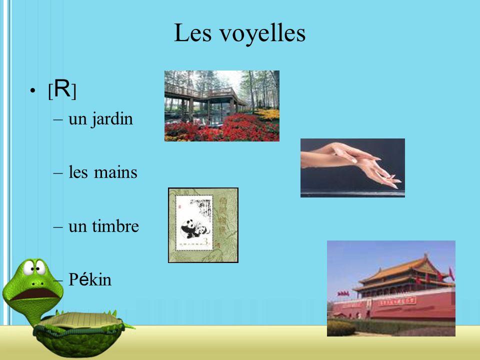 Les voyelles [ R ] –un jardin –les mains –un timbre –P é kin