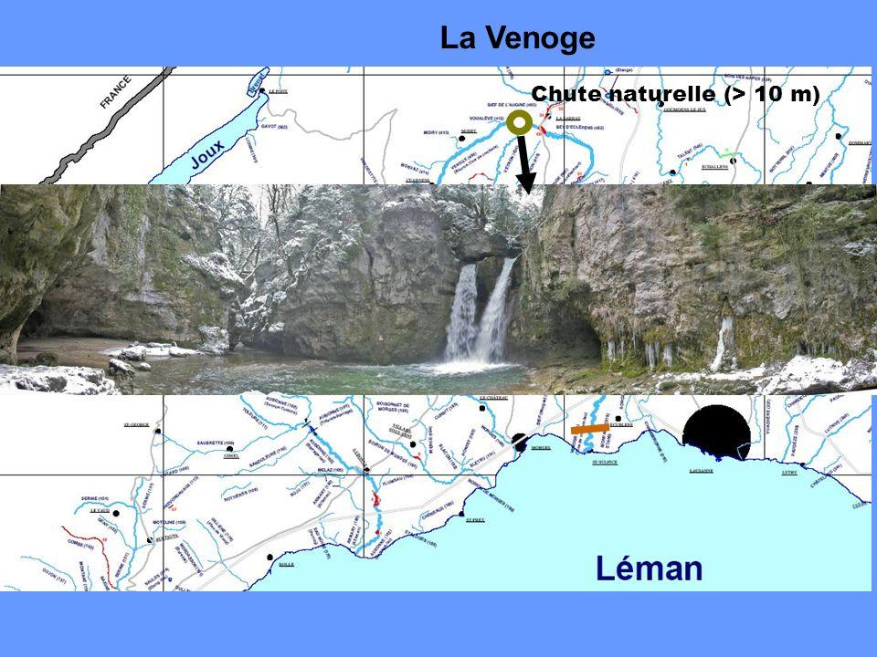 La Venoge Chute naturelle (> 10 m)